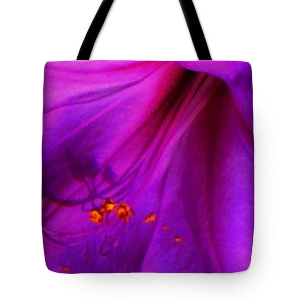 Tote Bag featuring the photograph Glory And Hallelujah by Lenore Senior