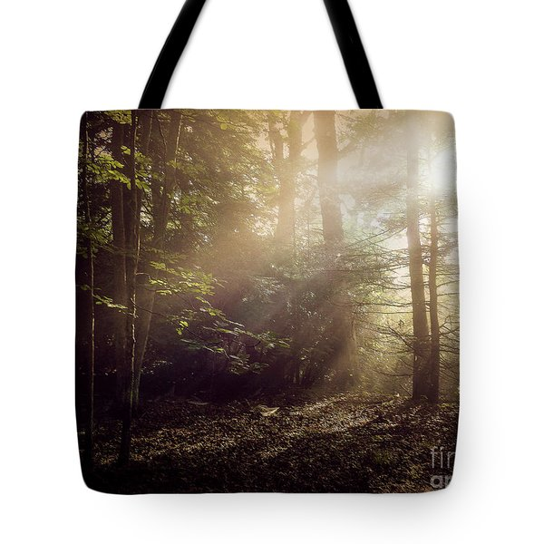 Tote Bag featuring the photograph Glory Comin Down by Brenda Bostic