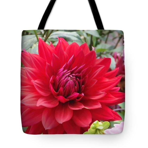 Glory Crimson Dahlia  Tote Bag