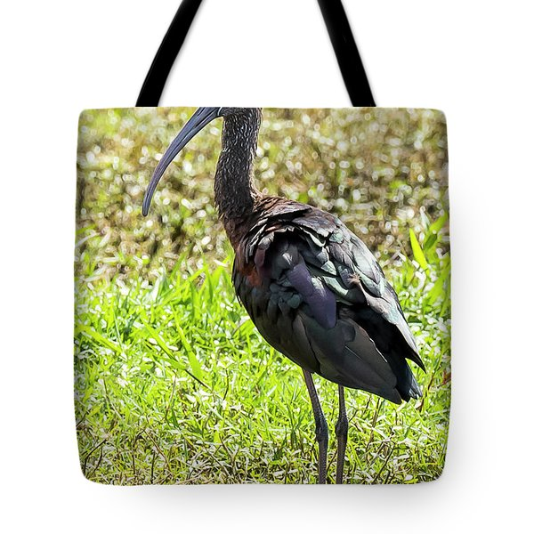 Tote Bag featuring the photograph Glossy Ibis by Michael D Miller