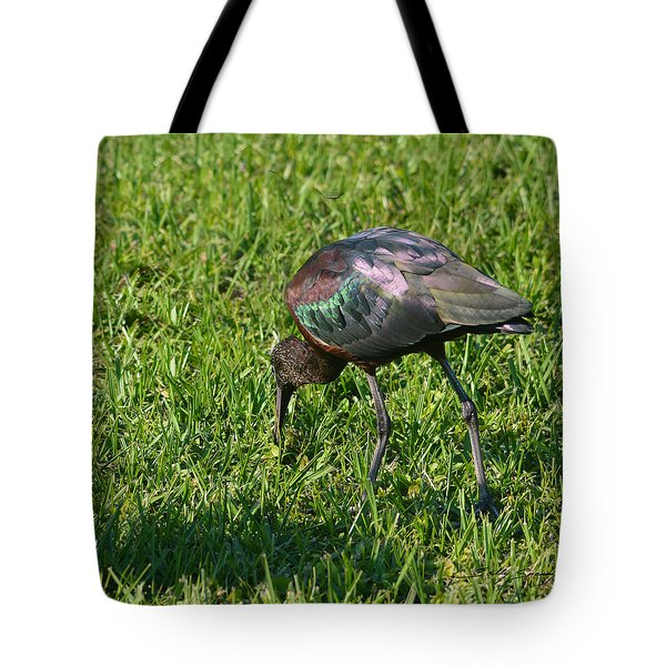 Tote Bag featuring the pyrography Glossy Ibis by Sally Sperry