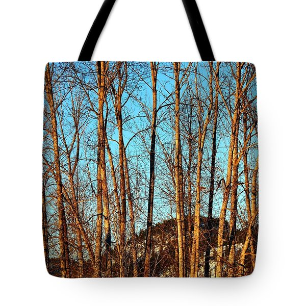 Tote Bag featuring the photograph Glow Of The Setting Sun by Will Borden