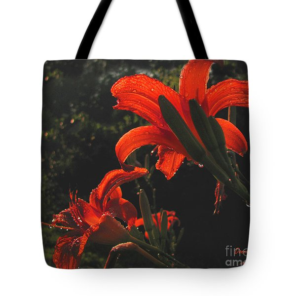 Tote Bag featuring the photograph Glowing Day Lilies by Donna Brown