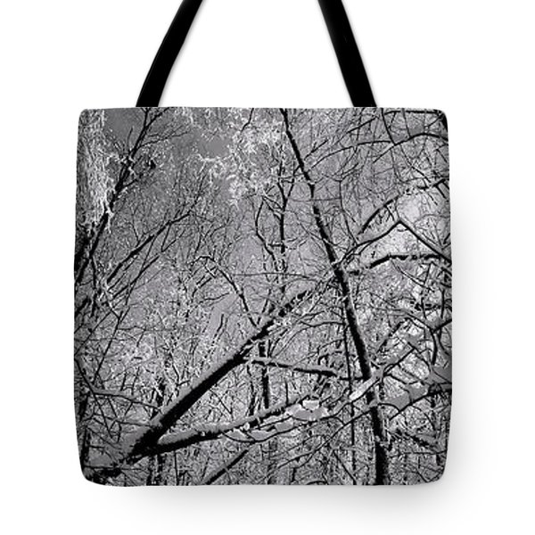 Glowing Forest, Knoch Knolls Park, Naperville Il Tote Bag
