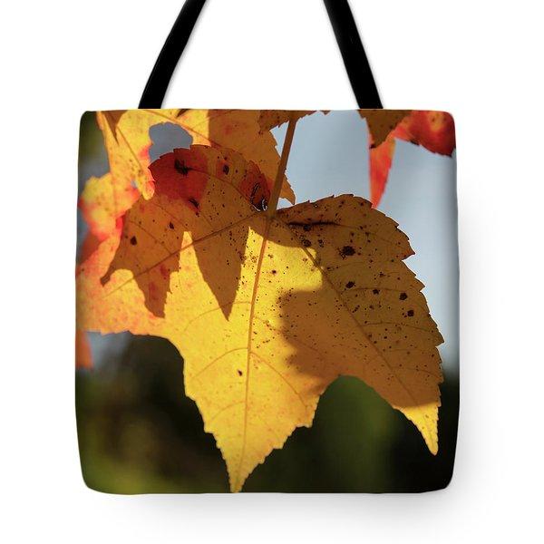 Glowing Leaves Tote Bag