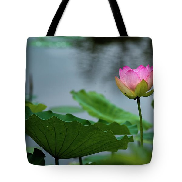 Tote Bag featuring the photograph Glowing Lotus Lily by Dennis Dame
