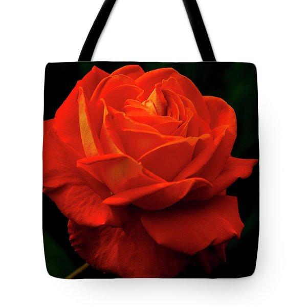 Glowing Orange Rose Tote Bag