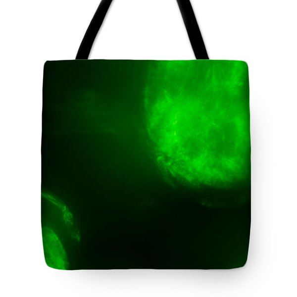 Tote Bag featuring the photograph Glowing Orbs by Greg Collins