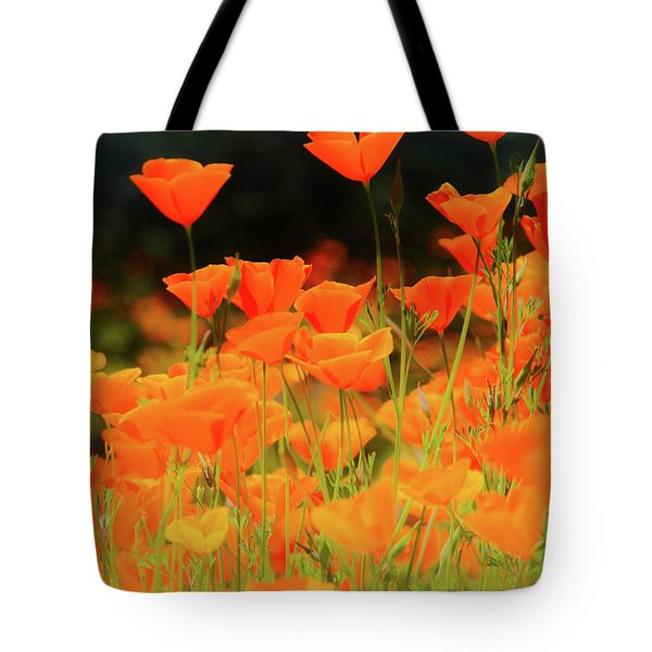 Glowing Poppies Tote Bag