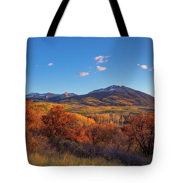 Glowing Red Gambel Oak Outshines The Golden Aspen Forest In Colorado Tote Bag