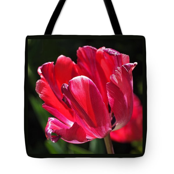 Glowing Red Tulip Tote Bag by Rona Black