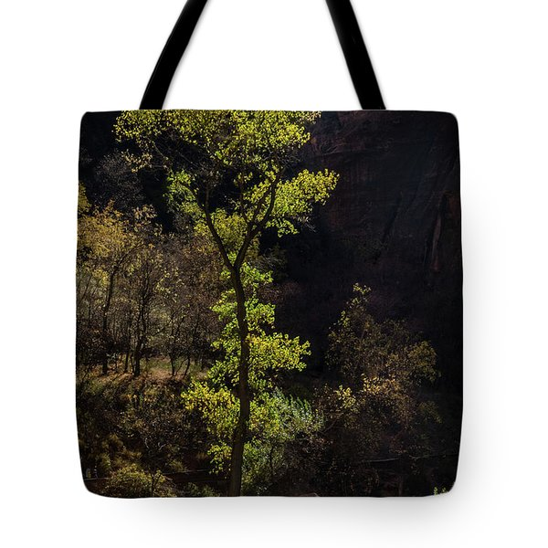 Glowing Tree At Zion Tote Bag