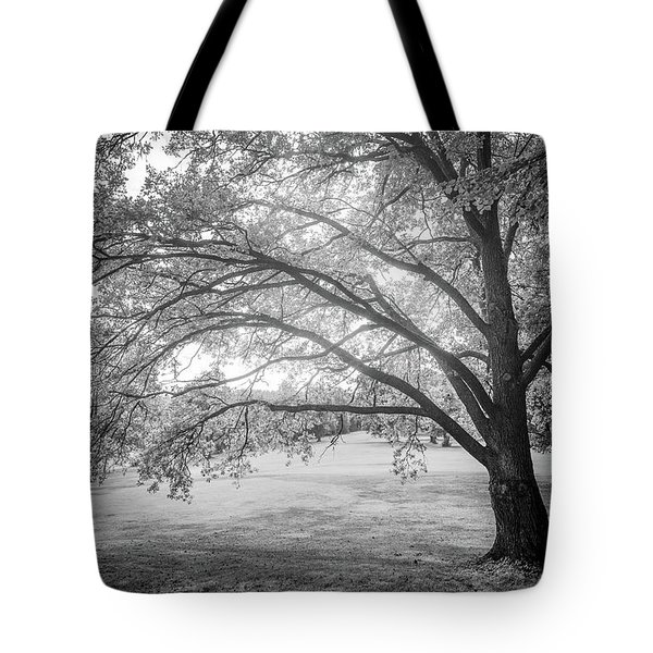 Glowing Tree Tote Bag by Teemu Tretjakov