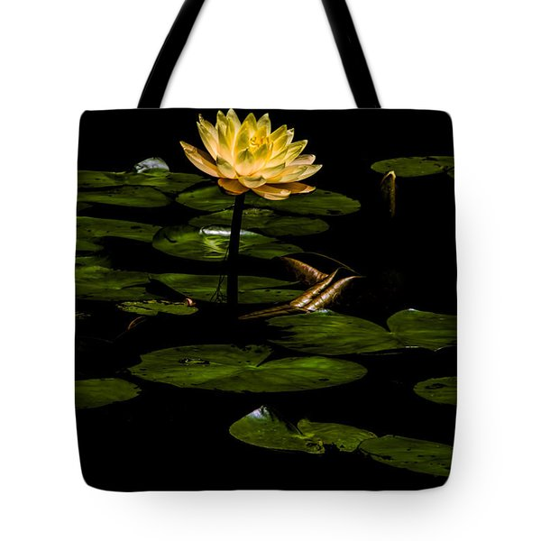Tote Bag featuring the photograph Glowing Waterlily by Barbara Bowen