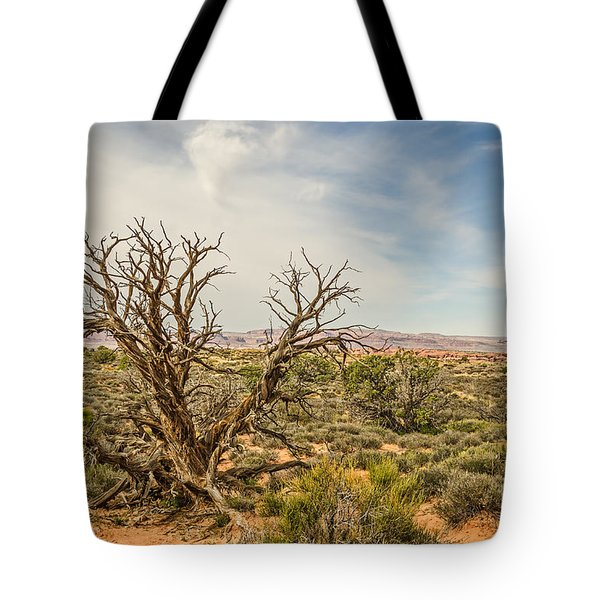 Gnarled Juniper Tree In Arches Tote Bag