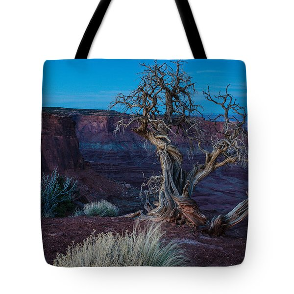 Gnarled Tote Bag by Paul Noble