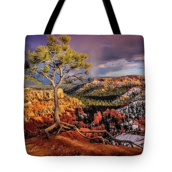 Gnarled Tree At Bryce Canyon Tote Bag