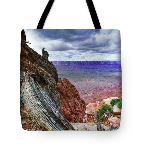Gnarly Desert Tote Bag