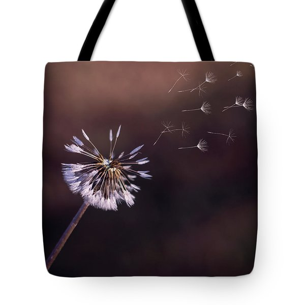 Go Forth Fall Tote Bag by Heather Applegate