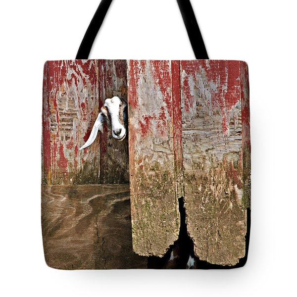 Tote Bag featuring the photograph Goat And Old Barn Door by Susan Leggett