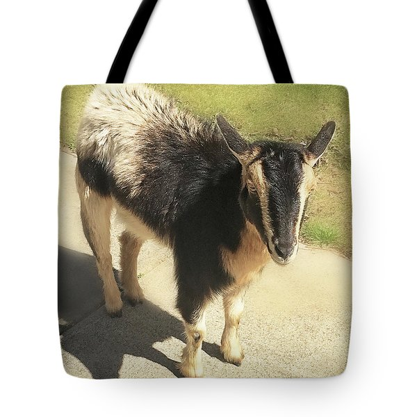 Goat Tote Bag by Heather Applegate