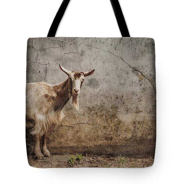 London, England - Goat Tote Bag