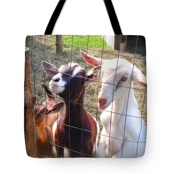 Tote Bag featuring the photograph Goats by Felipe Adan Lerma