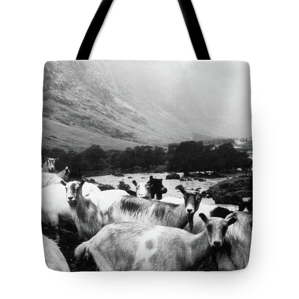 Tote Bag featuring the mixed media Goats In Norway- By Linda Woods by Linda Woods