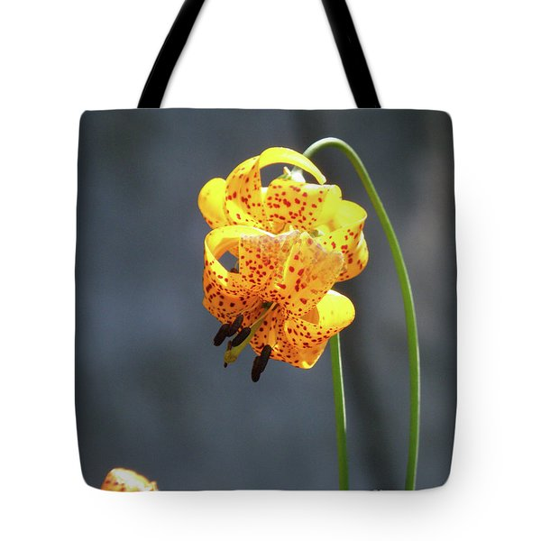 God's Classic Work In The Wilderness Tote Bag