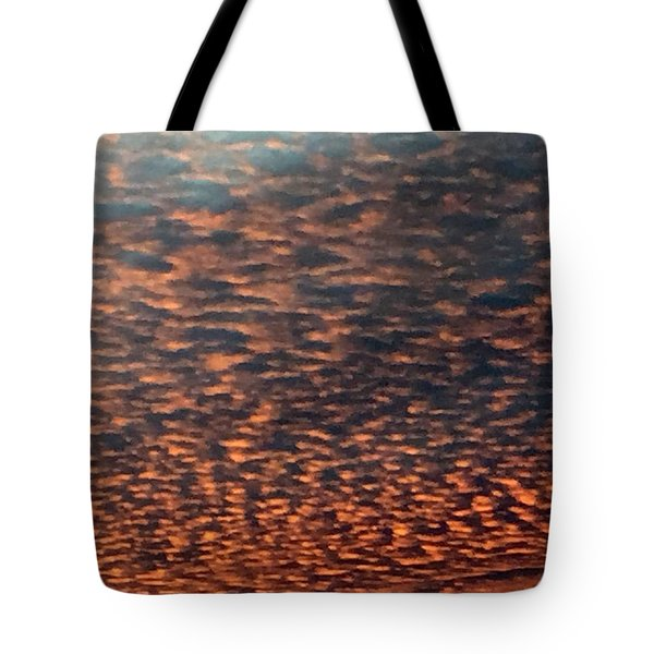 God's Covering Tote Bag by Audrey Robillard
