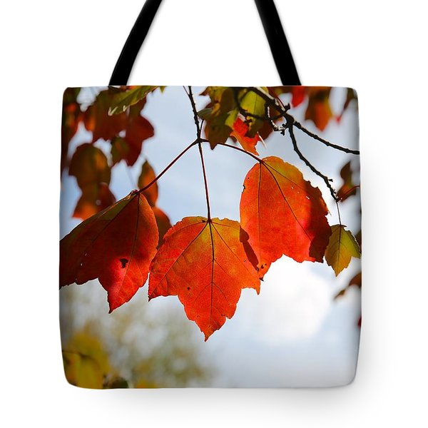 Gods Everywhere Tote Bag