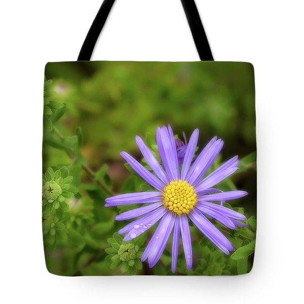 Gods Handiwork Tote Bag