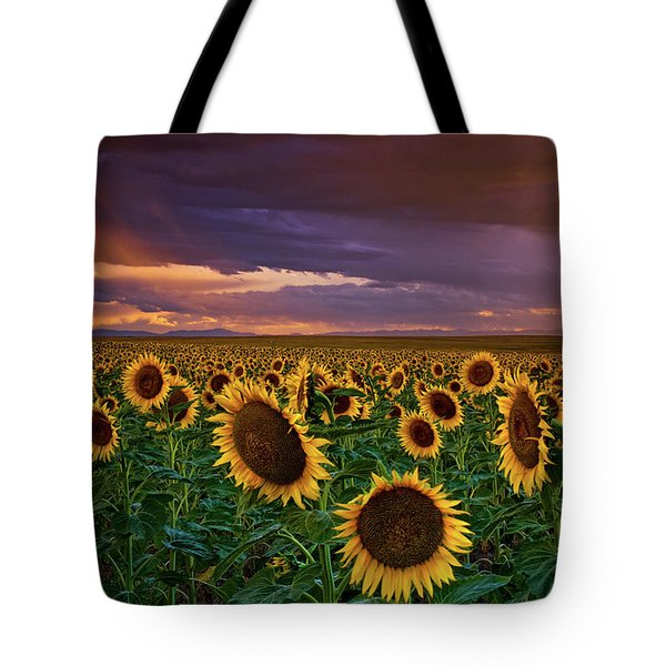 God's Painted Sky Tote Bag