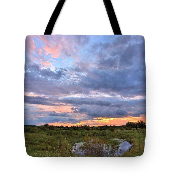 God's Painting Tote Bag by Mina Isaac