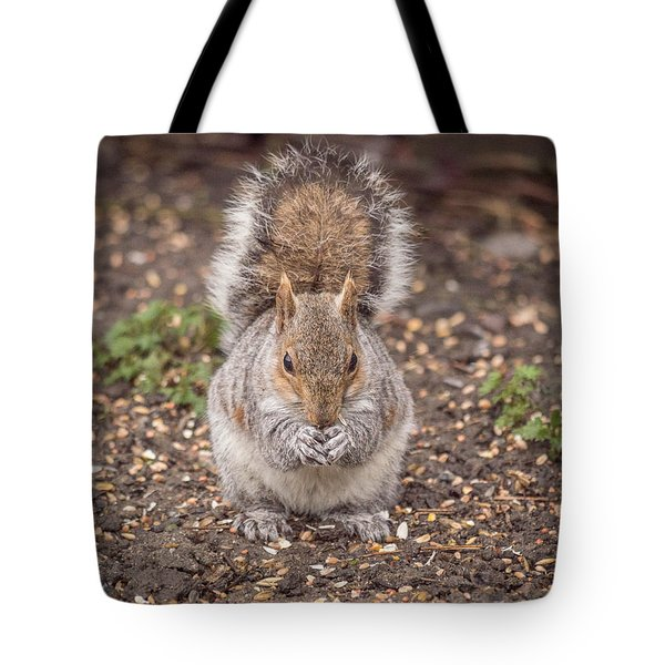 Going Nutz Tote Bag