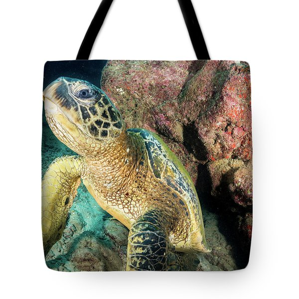 Going Up Anyone... Tote Bag