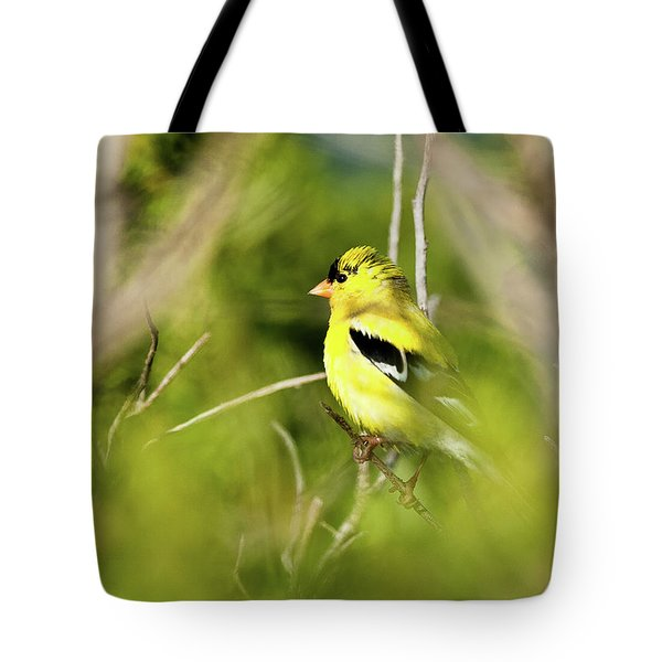 Gold Finch Tote Bag