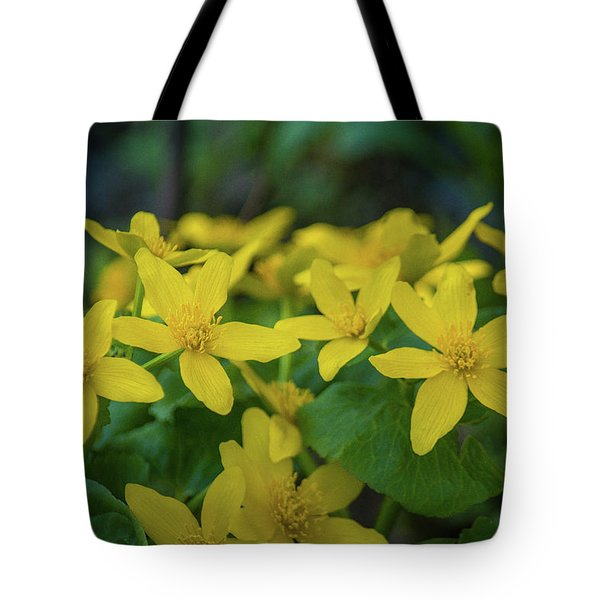 Tote Bag featuring the photograph Gold In The Marsh by Bill Pevlor