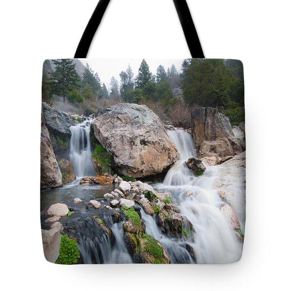 Goldbug Hot Springs Tote Bag