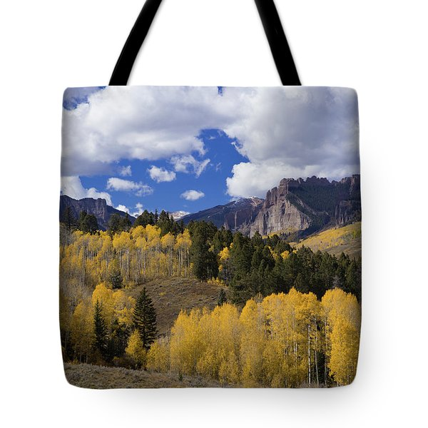 Golden Aspen Trees In The Gunnison National Forest Of Colorado Tote Bag