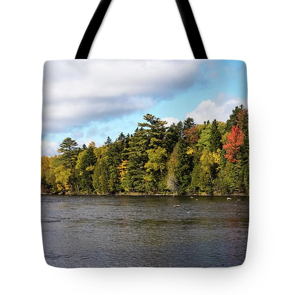 Golden Autum Day Tote Bag by Sandy Molinaro