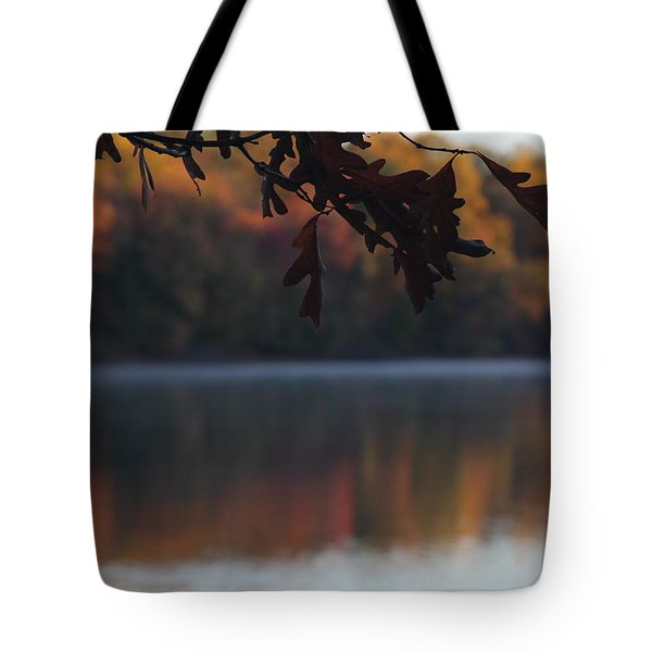 Tote Bag featuring the photograph Golden Autumn by Vadim Levin
