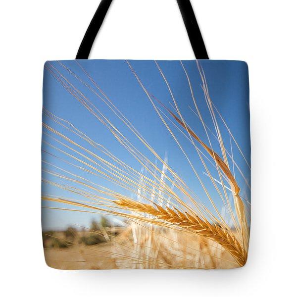 Golden Barley Ear Tote Bag