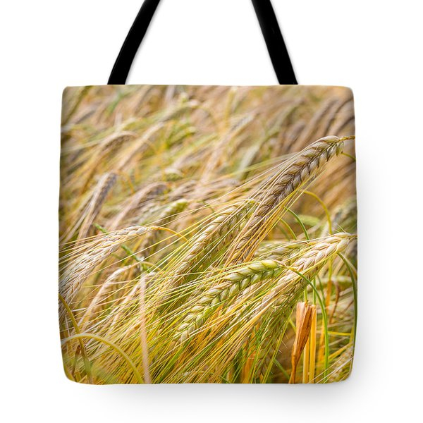 Tote Bag featuring the photograph Golden Barley. by Gary Gillette