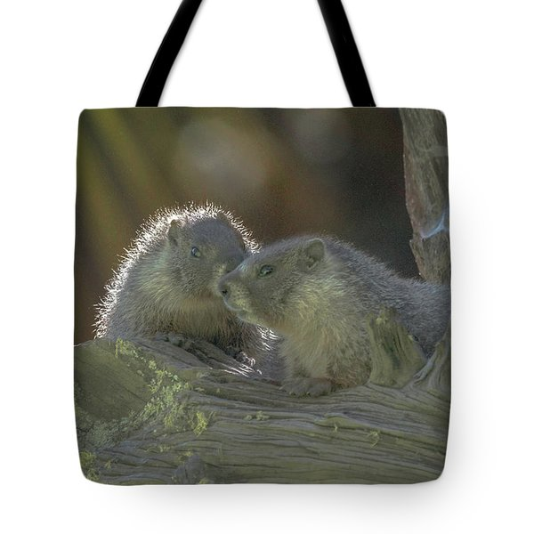 Golden Bellied Marmot Tote Bag