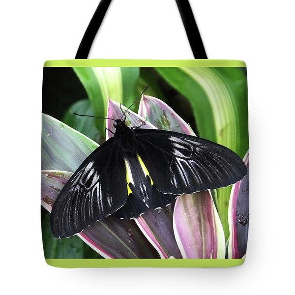 Golden Birdwing Tote Bag