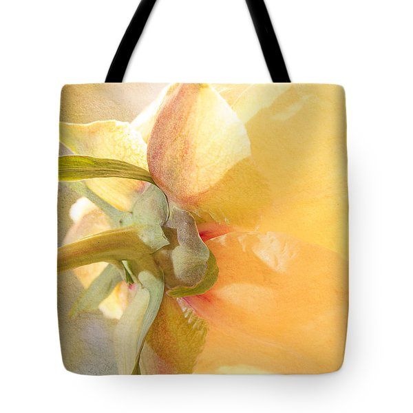 Golden Bowl Tree Peony Bloom - Back Tote Bag by Patti Deters