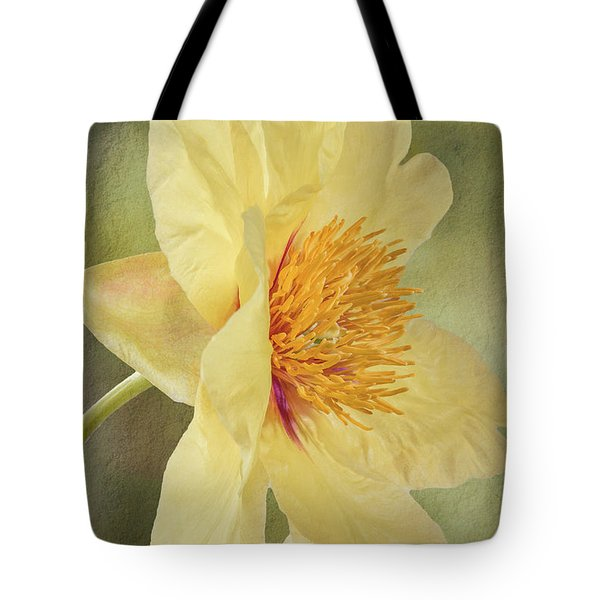 Golden Bowl Tree Peony Bloom - Profile Tote Bag by Patti Deters