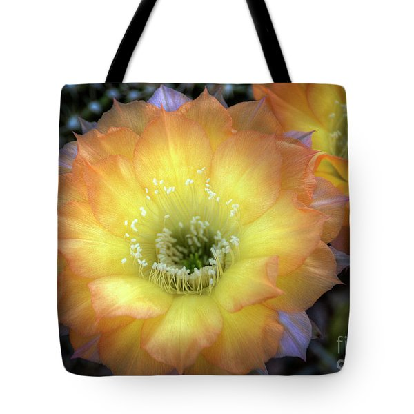 Golden Cactus Bloom Tote Bag