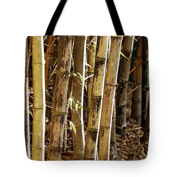 Tote Bag featuring the photograph Golden Canes by Linda Lees